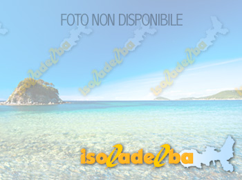 Isola d'Elba Bed and Breakfast Alex B&B