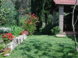 Isola d'Elba Bed and Breakfast Bed and Breakfast Phoenix