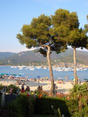 Marina di Campo - La spiaggia