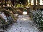 Marina di Campo - Giardino nella neve